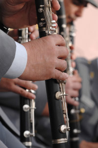 Flute Fix Clarinets Repairs & Maintenance